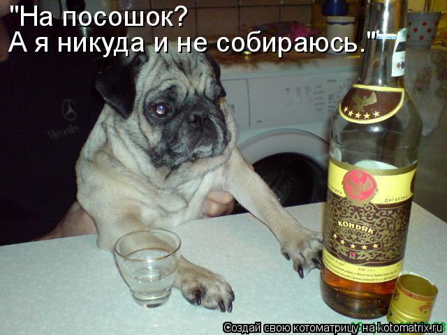 http://kotomatrix.ru/images/lolz/2010/08/19/656892.jpg