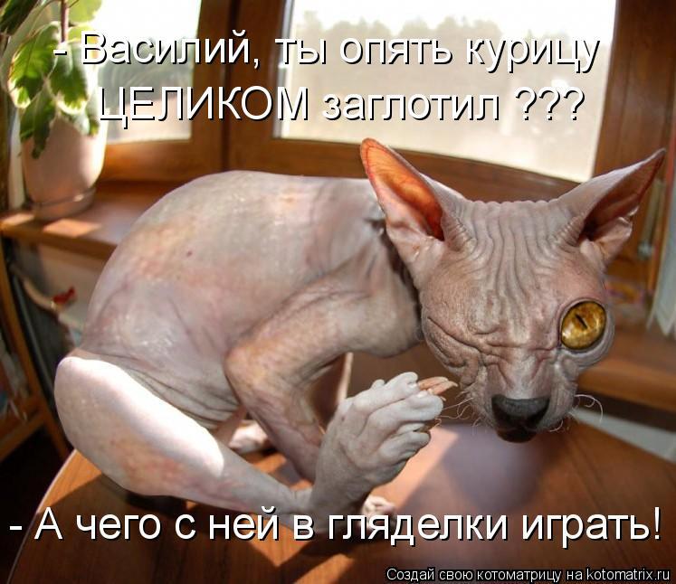 Котоматрица: - Василий, ты опять курицу ЦЕЛИКОМ заглотил ??? - А чего с ней в гляделки играть!