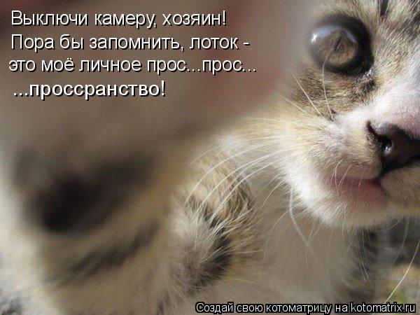 http://kotomatrix.ru/images/lolz/2010/08/19/657350.jpg