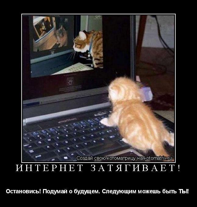 Котоматрица: Интернет затягивает!  Остановись! Подумай о будущем. Следующим можешь быть ТЫ!