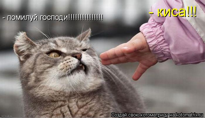 - помилуй господи!!!!!!!!!!!!!!! - киса!!!