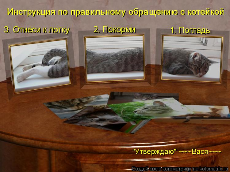 """Котоматрица: Инструкция по правильному обращению с котейкой 1. Погладь  2. Покорми 3. Отнеси к лотку """"Утверждаю"""" ~~~Вася~~~"""