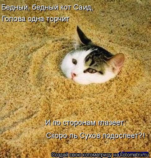 Котоматрица: Голова одна торчит Скоро ль Сухов подоспеет?! И по сторонам глазеет: Бедный, бедный кот Саид,