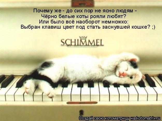 Котоматрица: Почему же - до сих пор не ясно людям -  Чёрно белые коты рояли любят? Или было всё наоборот немножко: Выбран клавиш цвет под стать заснувшей ко