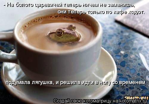 Котоматрица: они теперь только по кафе ходют.  подумала лягушка, и решила идти в ногу со временем. - На болото царевичей теперь ничем не заманишь,
