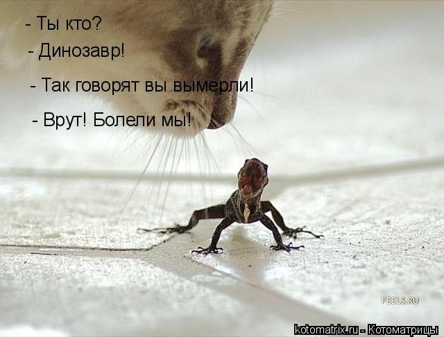 Котоматрица: - Ты кто? - Динозавр! - Так говорят вы вымерли! - Врут! Болели мы!