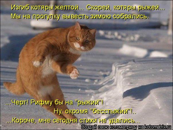 Котоматриця!)))) - Страница 4 658606