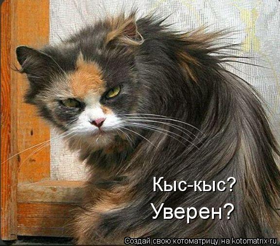 http://kotomatrix.ru/images/lolz/2010/08/22/659091.jpg