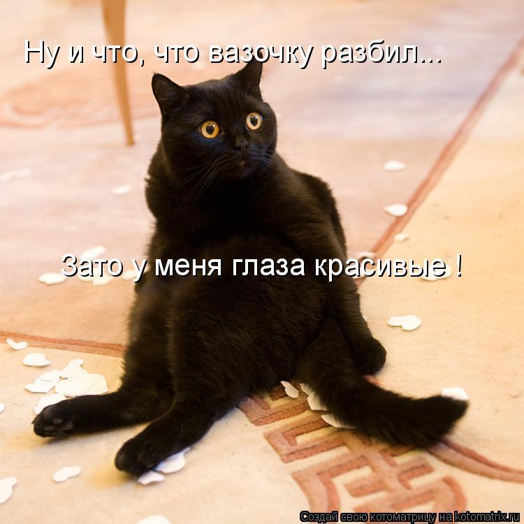 Котоматрица: Ну и что, что вазочку разбил... Зато у меня глаза красивые !