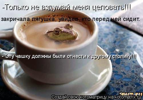 Котоматрица: -Только не вздумай меня целовать!!! закричала лягушка, увидев, кто перед ней сидит. - Эту чашку должны были отнести к другому столику!!!