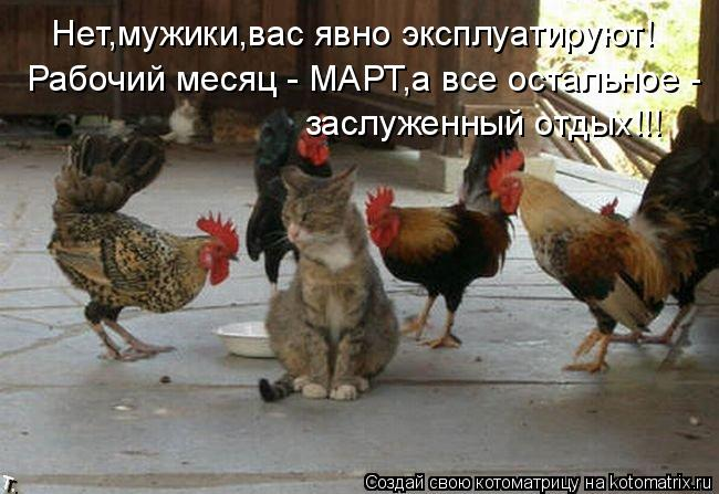 Котоматрица: Нет,мужики,вас явно эксплуатируют! Рабочий месяц - МАРТ,а все остальное - заслуженный отдых!!!