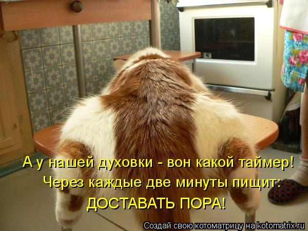 Котоматрица: А у нашей духовки - вон какой таймер! ДОСТАВАТЬ ПОРА! Через каждые две минуты пищит: