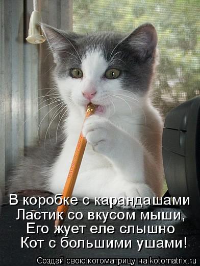 Котоматрица: В коробке с карандашами  Ластик со вкусом мыши,  Его жует еле слышно  Кот с большими ушами!