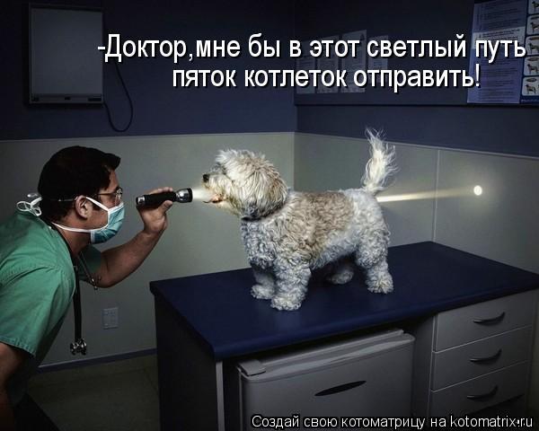 Котоматрица: -Доктор,мне бы в этот светлый путь  пяток котлеток отправить!