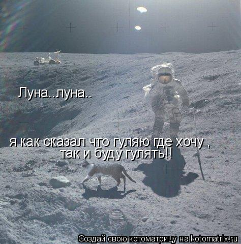 Котоматрица: Луна..луна.. я как сказал что гуляю где хочу , так и буду гулять!!
