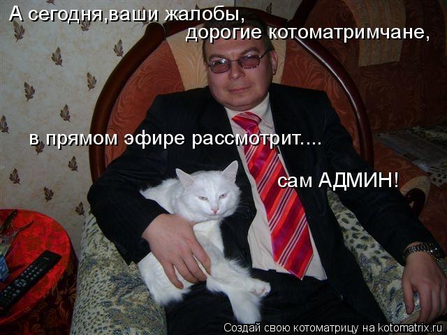 Котоматрица: А сегодня,ваши жалобы, дорогие котоматримчане,  в прямом эфире рассмотрит.... сам АДМИН!