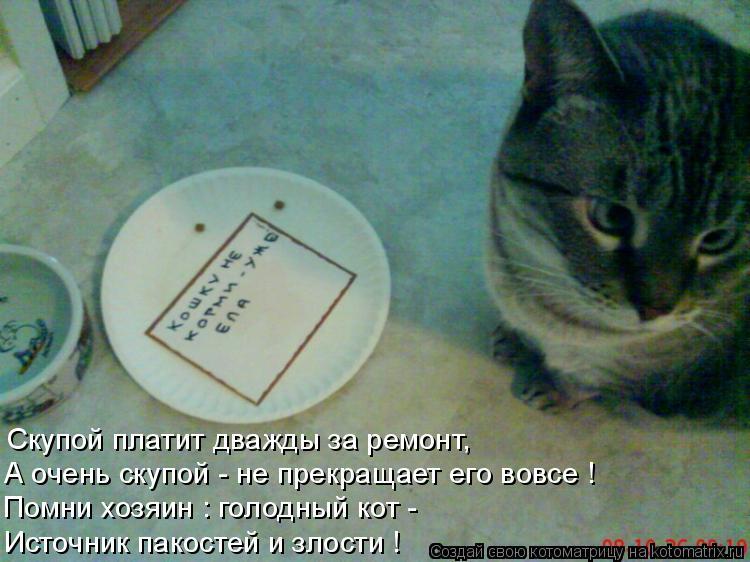 Котоматрица: Скупой платит дважды за ремонт, А очень скупой - не прекращает его вовсе ! Помни хозяин : голодный кот - Источник пакостей и злости !