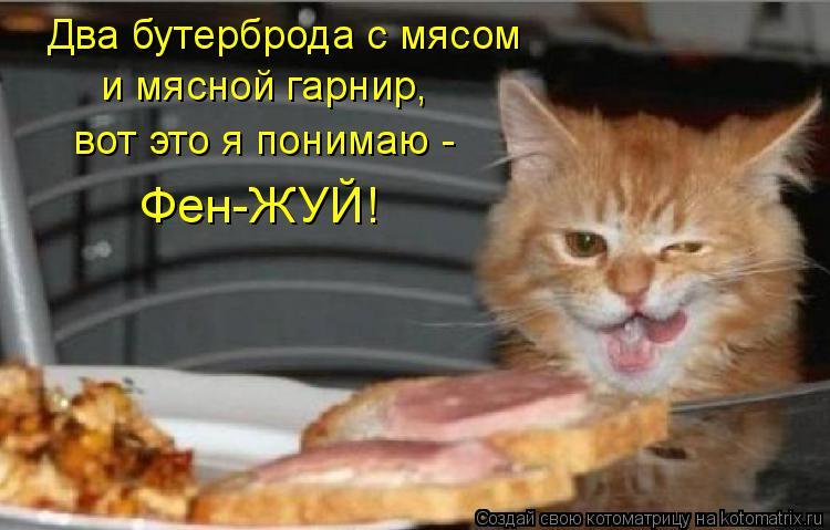 Два бутерброда с мясом и мясной гарнир, вот это я понимаю - Фен-ЖУЙ!
