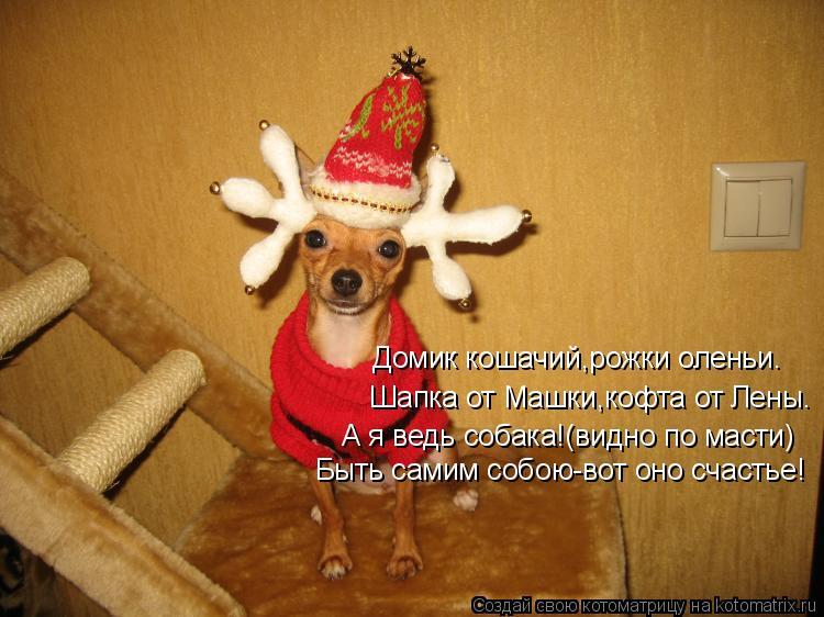 Как сделать оленьи рожки для собаки