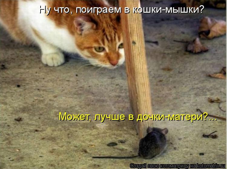Ну что, поиграем в кошки-мышки? Может, лучше в дочки-матери?...
