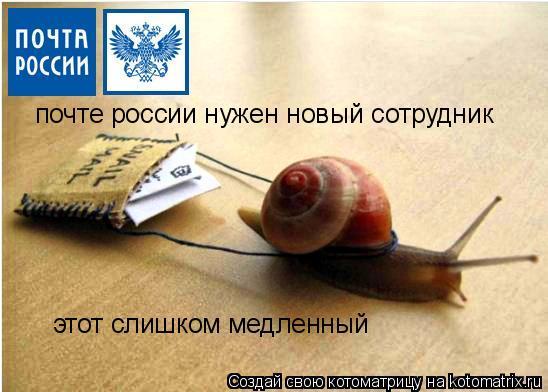 Котоматрица: почте россии нужен новый сотрудник этот слишком медленный