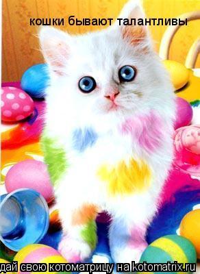 Котоматрица: кошки бывают талантливы