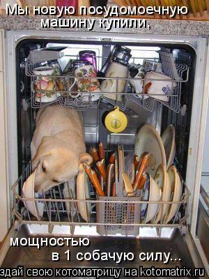 Котоматрица: Мы новую посудомоечную машину купили, мощностью   в 1 собачую силу...