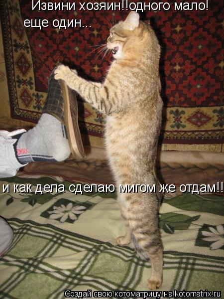 Котоматрица: Извини хозяин!!одного мало! еще один... и как дела сделаю мигом же отдам!!