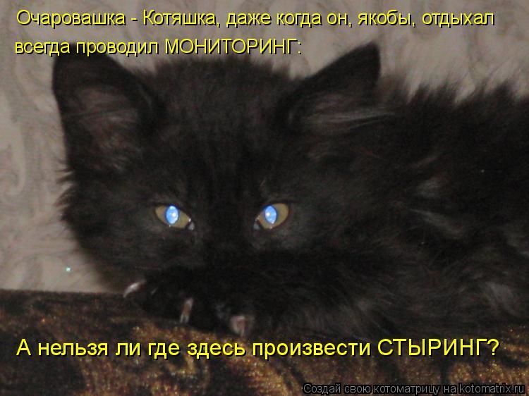 Очаровашка - Котяшка, даже когда он, якобы, отдыхал всегда проводил МО