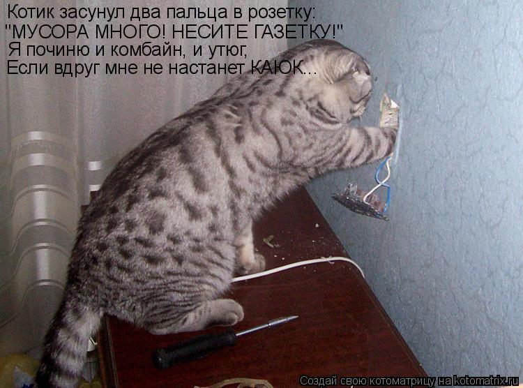 """Котоматрица: Котик засунул два пальца в розетку: """"МУСОРА МНОГО! НЕСИТЕ ГАЗЕТКУ!"""" Я починю и комбайн, и утюг, Если вдруг мне не настанет КАЮК..."""
