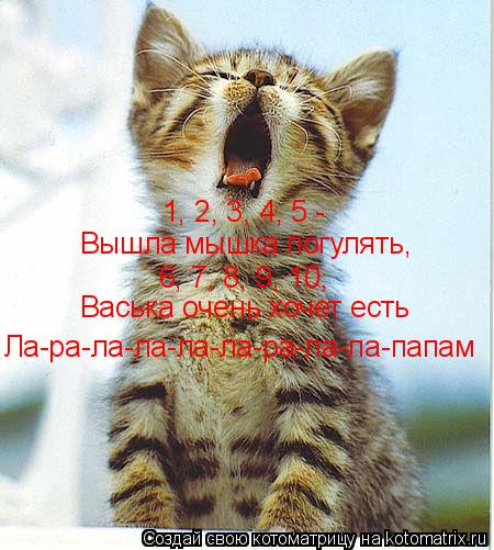 Котоматрица: 1, 2, 3, 4, 5 -  Вышла мышка погулять, 6, 7, 8, 9, 10,  Васька очень хочет есть Ла-ра-ла-ла-ла-ла-ра-ла-ла-папам