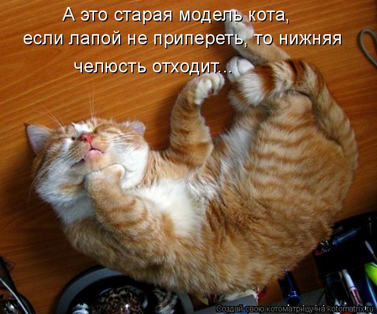 А это старая модель кота, если лапой не припереть, то нижняя челюсть