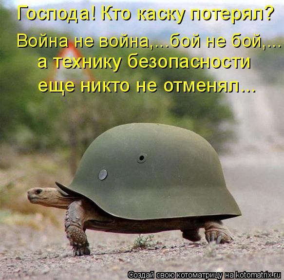 Котоматрица: Господа! Кто каску потерял?   Война не война,...бой не бой,...  а технику безопасности  еще никто не отменял...