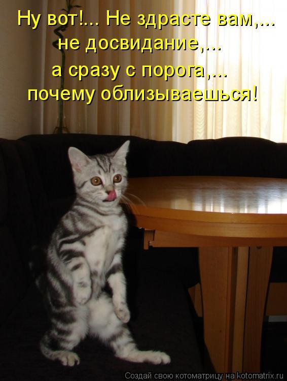 Котоматрица: Ну вот!... Не здрасте вам,... не досвидание,...  почему облизываешься! а сразу с порога,...