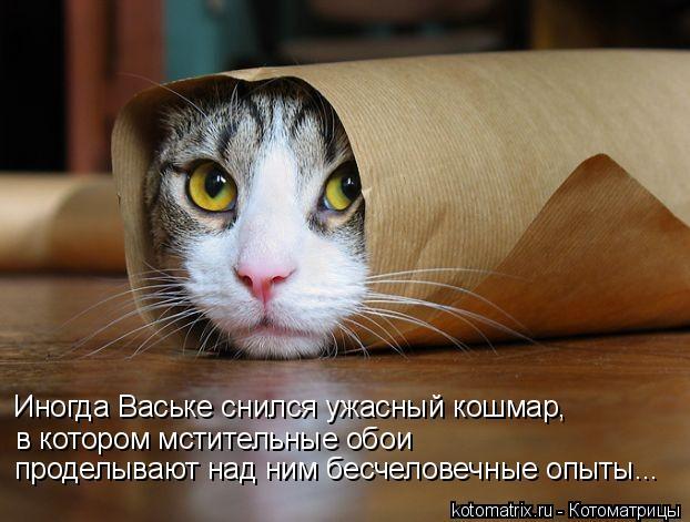 Иногда Ваське снился ужасный кошмар, в котором мстительные обои проде