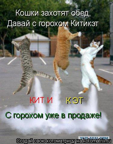 Котоматрица: Кошки захотят обед, Давай с горохом Китикэт КИТ И  К ЭТ С горохом уже в продаже!