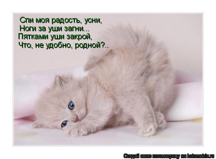 Спи моя радость