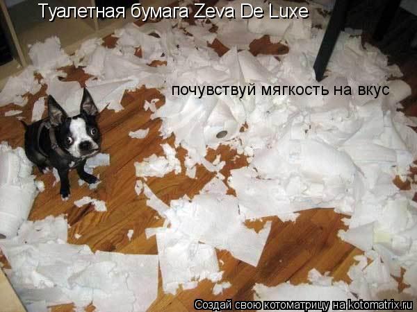 Котоматрица: Туалетная бумага Zeva De Luxe почувствуй мягкость на вкус