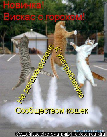 Котоматрица: Новинка! Вискас с горохом! Не рекомендовано  К употреблению Сообществом кошек