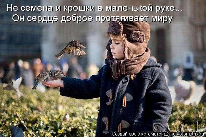 Котоматрица: Не семена и крошки в маленькой руке... Он сердце доброе протягивает миру