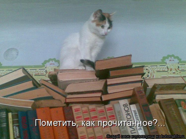 Котоматрица: Пометить, как прочитанное?...