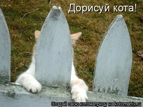 Дорисуй кота!