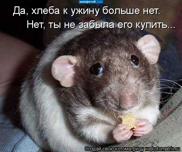 Да, хлеба к ужину больше нет. Нет, ты не забыла его купить...