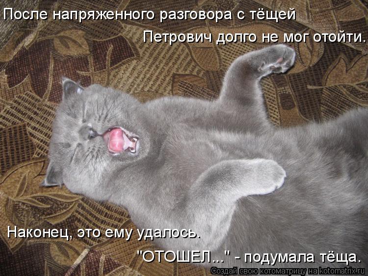 """Котоматрица: После напряженного разговора с тёщей Петрович долго не мог отойти. Наконец, это ему удалось. """"ОТОШЕЛ..."""" - подумала тёща."""