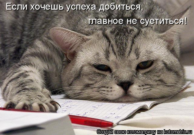 http://kotomatrix.ru/images/lolz/2010/09/04/670878.jpg