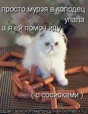 Котоматрица: просто мурзя в колодец просто мурзя в колодец упала  а я ей помоч иду ( с сосисками )