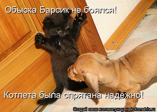 Котоматрица: Обыска Барсик не боялся!  Котлета была спрятана надёжно!