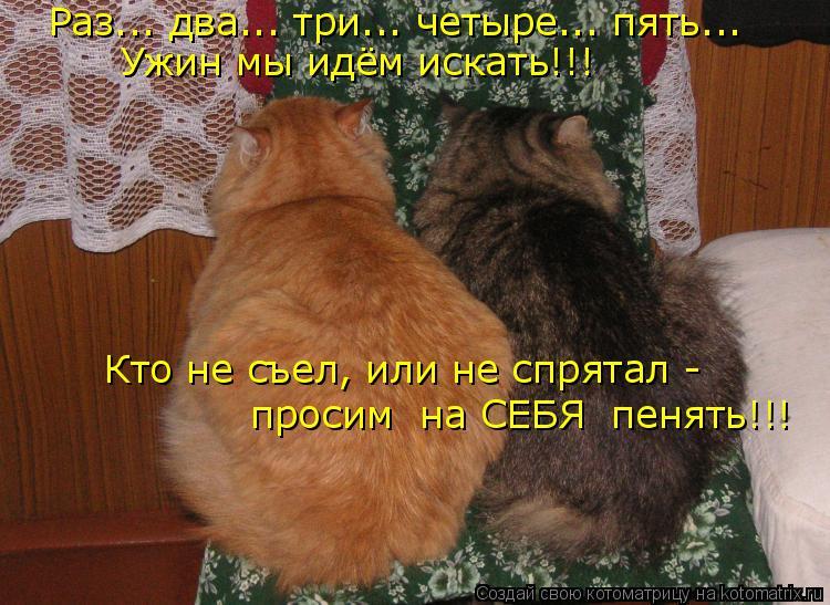 Котоматрица: Раз... два... три... четыре... пять... Ужин мы идём искать!!! Кто не съел, или не спрятал - просим  на СЕБЯ  пенять!!!