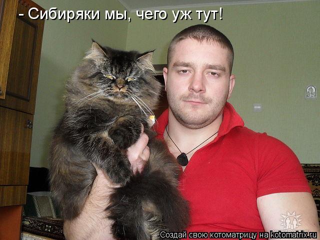 Котоматрица: - Сибиряки мы, чего уж тут!
