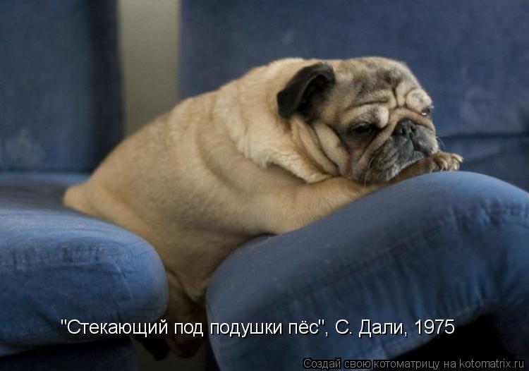 """Котоматрица: """"Стекающий под подушки пёс"""", С. Дали, 1975"""